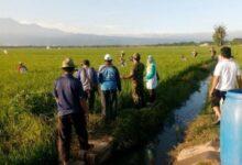 Program Pengembangan Pertanian NU