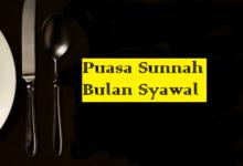 Puasa Sunnah Syawal: Hukum, Keutamaan, Waktu dan Niat